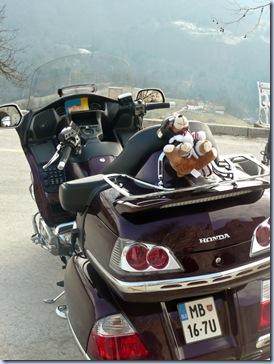 Honda z medvedkom