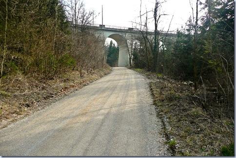 02 gozdna cesta in most