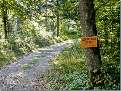 gozdna cesta zaprta!