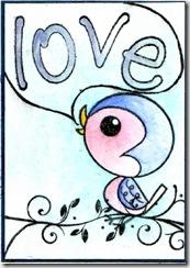 17 lovebird-s