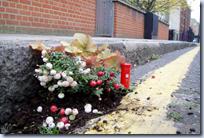 Pothole gardening