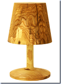 This Not A Lamp