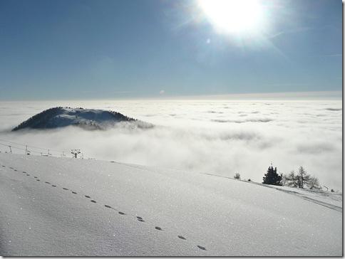 Kriška planina v megli